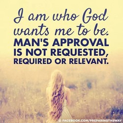 anv Ced 