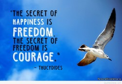 SECRET Of 