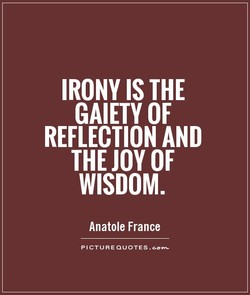 IRONY IS THE 