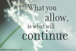 What you allow, is what will continue , starttravelinglight.com