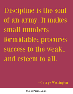 Discipline is the soul 