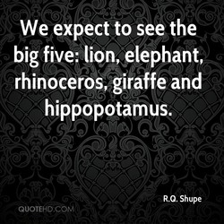 We expect to see the 