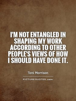I'M NOT ENTANGLED IN 