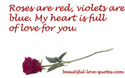 Rose,y red/, violet-yare 