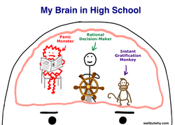 My Brain in High School 