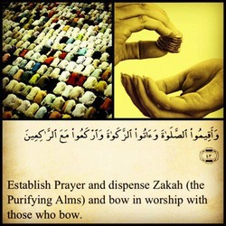 i,X'J, i 