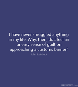 I have never smuggled anything 
