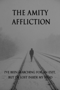 THE AMITY 