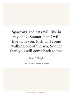 Sparrows and eats will live in 