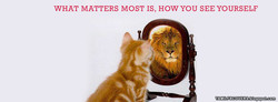 WHAT MATTERS MOST IS, HOW YOU SEE YOURSELF TAMIL r BC OVERS blogspotcom