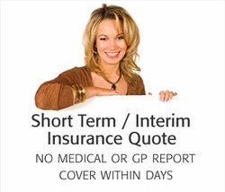 Short Term / Interim 