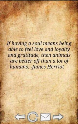 If having a soul means being 