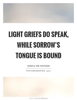 LIGHT GRIEFS DO SPEAK, 