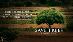 TREES ARE THE EART>Y' 