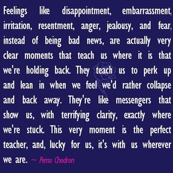 Feelings like disappointment, embarrassment, irritation, resentment, anger, jealousy, and fear, instead of being bad news, are actually very clear moments that teach us where it is that we're holding back They teach us to perk up and lean in when we fee/ we'd rather collapse and back away. They're like messengers that show us, with terrifying clarity, uactly where we're stuck This very moment is the perfect teacher, and, lucky for us, it's with us wherever — Pema Chodron we are.