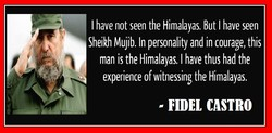I have not seen the Himalayas, But I have seen 