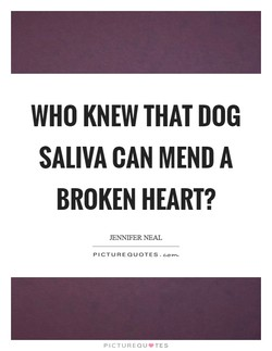 WHO KNEW THAT DOG 