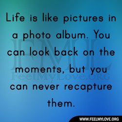 Life is like pictures in 