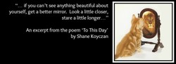 if you can't see anything beautiful about 