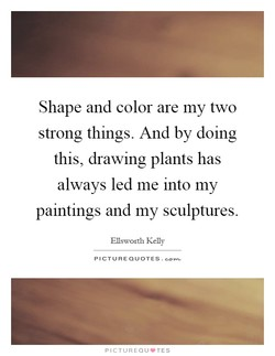 Shape and color are my two 