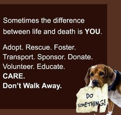 Sometimes the difference 