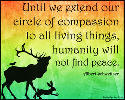 Clntil we extend our 