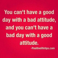 You canlt have a good 