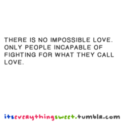 THERE IS NO IMPOSSIBLE LOVE. 