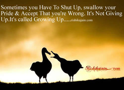 Sometimes you Have To Shut Up, swallow your 