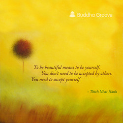 & Buddha Groove 