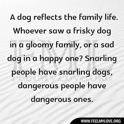 A dog reflects the family life. 