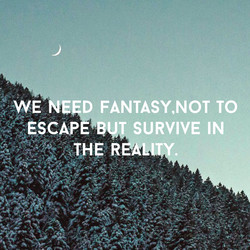 WE NE D FANTASY,NOT TO 
