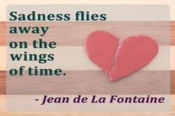 Sadness flies 