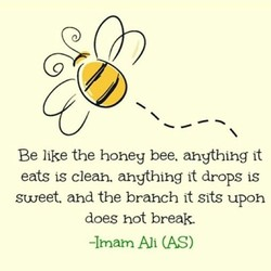 Be like the honey bee. anything it 