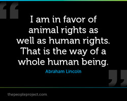 I am in favor of 