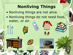 Nonliving Things 
