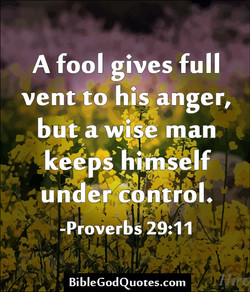 A fool gives full 