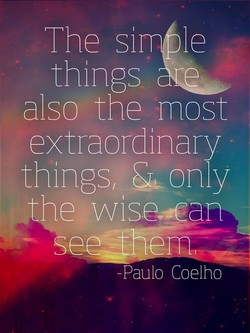 The si 