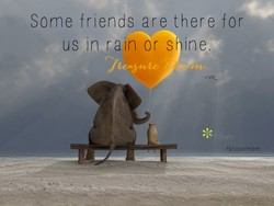 Some friends are there for 