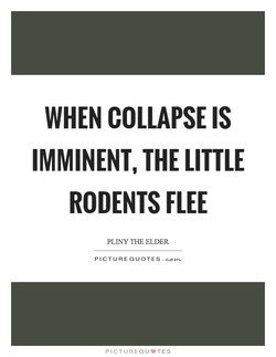 WHEN COLLAPSE IS 