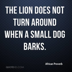 THE LION DOES NOT 