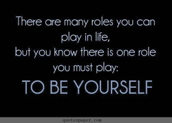 There are many roles you can 