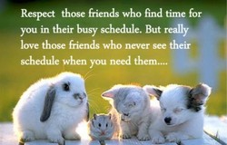 Respect those friends who find time for 
