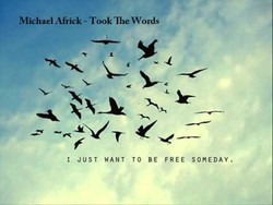 Michael Africk - Took 'lhe Words 