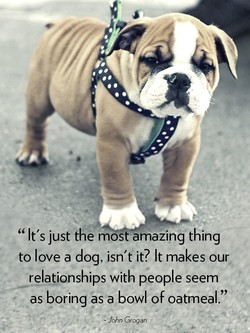 It's just the mos amazing thing 