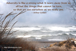 Adversity is like a strong wind. It tears away from 