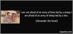 I am not afraid of an army of lions led by a sheep; I 