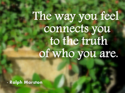 The way you feel connects you to the truth of»who you are. - Ralph Marston