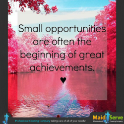 Small opportunit esv 