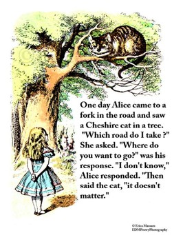 One day Alice came to a 